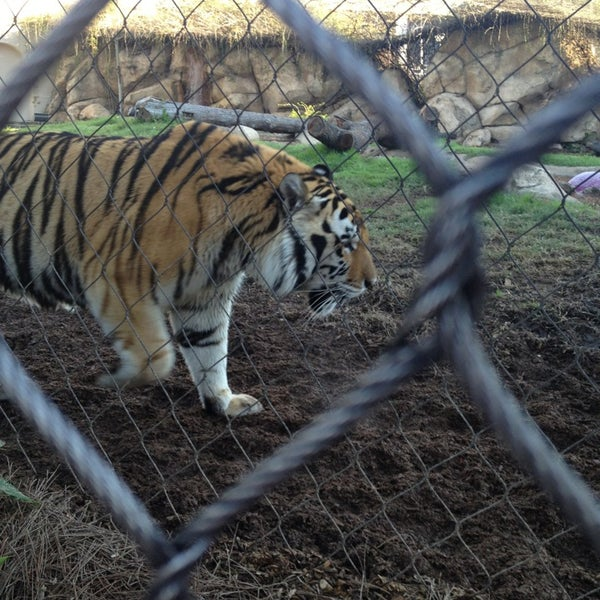 Photo taken at LSU - Mike's Habitat by Lynzey F. on 2/15/2013