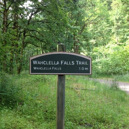 Photo taken at Wahclella Falls Trail by Matt R. on 6/16/2012