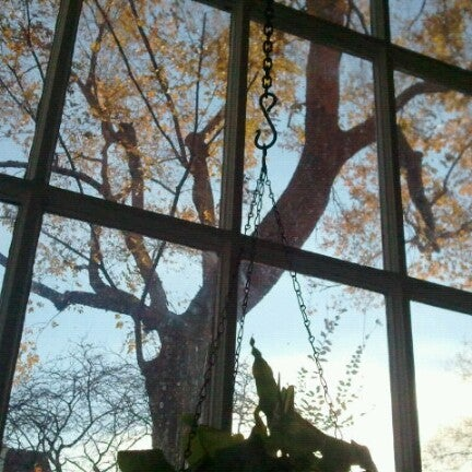 Photo taken at Bodhi Coffee by Mm p. on 11/25/2012