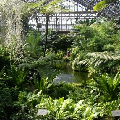 Photo taken at Garfield Park Conservatory by Larry D. on 3/28/2013