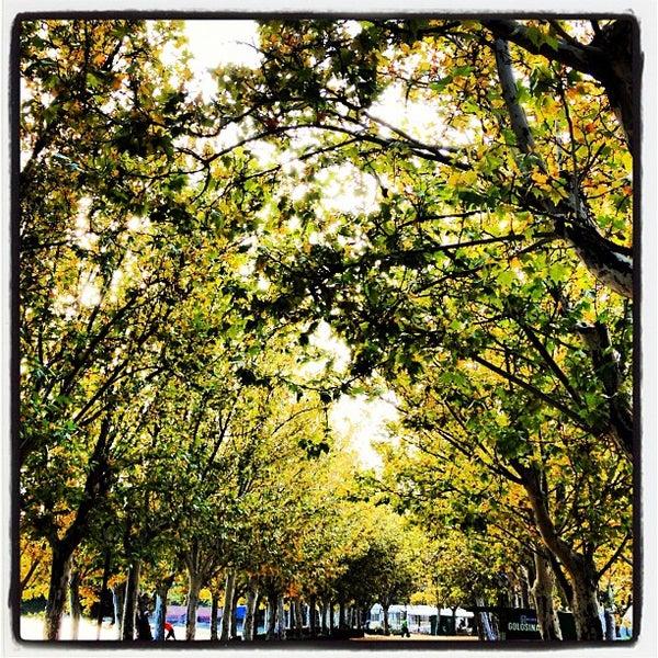 Photo taken at Lago de la Casa de Campo by Juan R. on 11/11/2012