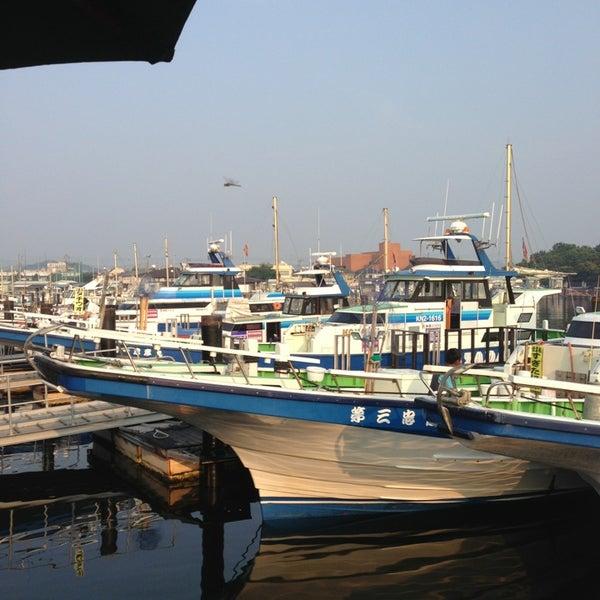 8/10/2013にYoshiharu. A.が金沢八景 忠彦丸 釣船・釣宿で撮った写真