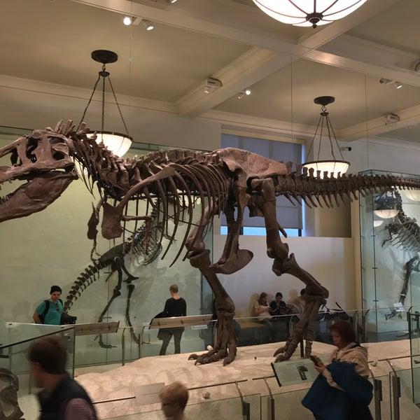 Photo taken at David H. Koch Dinosaur Wing by Alexander S. on 1/16/2017
