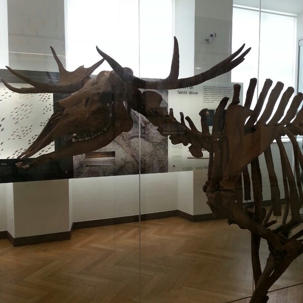 Photo taken at National Museum of Denmark by Ayche S. on 5/3/2013