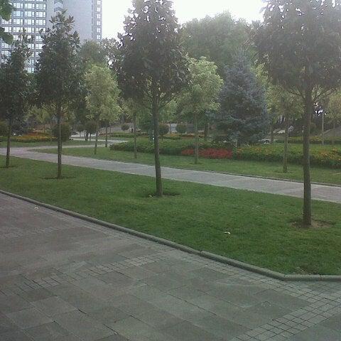 7/15/2013にTulay C.がTaksim Gezi Parkıで撮った写真