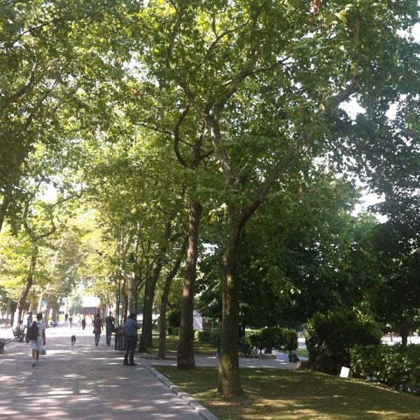 7/15/2013にnihat o.がTaksim Gezi Parkıで撮った写真