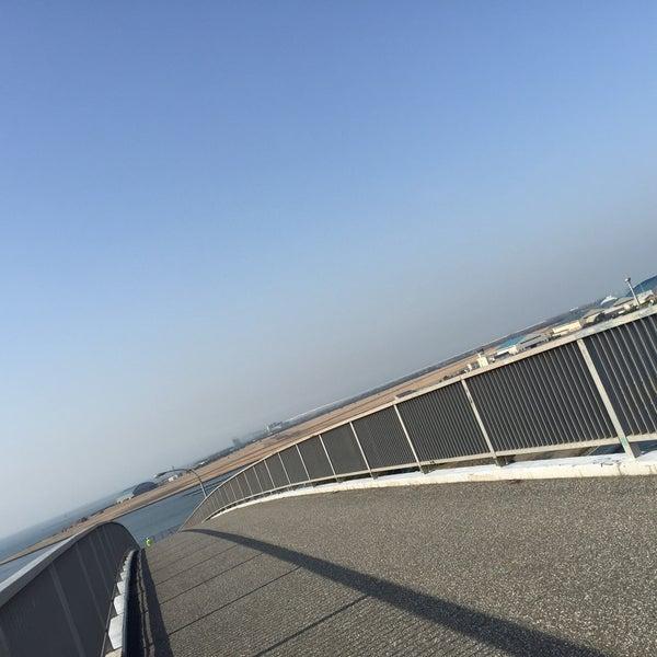 Photo taken at 中の島大橋 by kazu on 3/8/2016