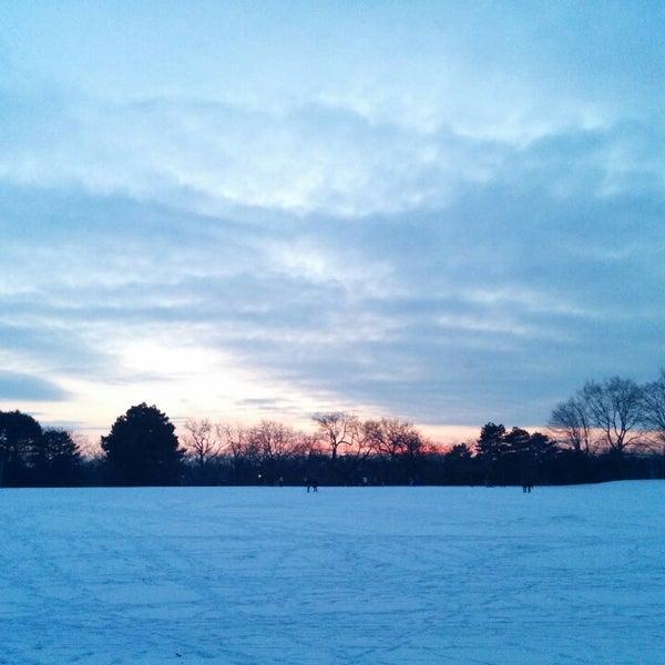 1/18/2014 tarihinde Jon A.ziyaretçi tarafından High Park'de çekilen fotoğraf
