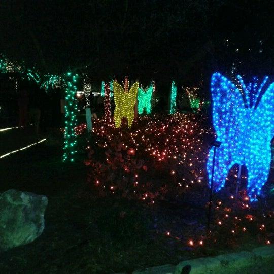 Florida botanical gardens largo fl - Florida botanical gardens christmas lights ...