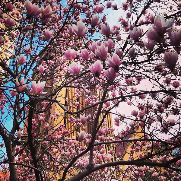 Photo taken at Church of the Holy Trinity (Episcopal) by Teddy on 4/15/2013