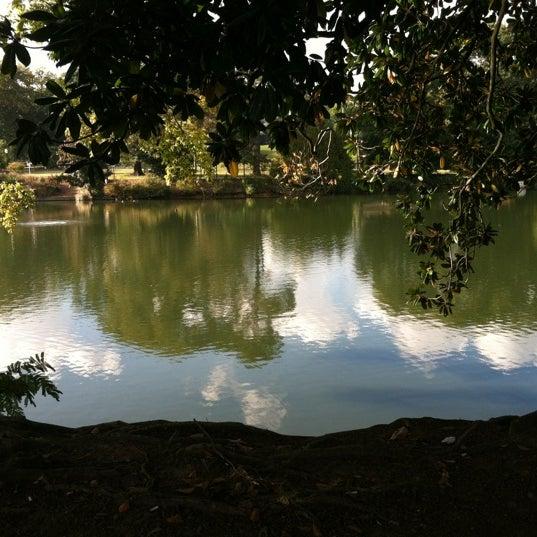 รูปภาพถ่ายที่ Piedmont Park โดย Claudia M. เมื่อ 10/18/2012