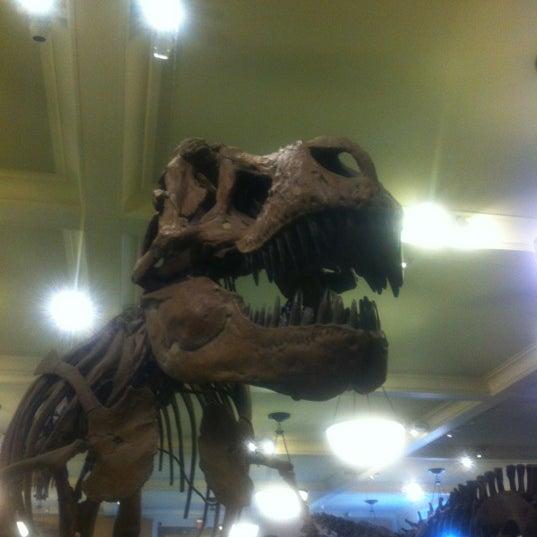 Photo taken at David H. Koch Dinosaur Wing by Rob C. on 2/18/2013