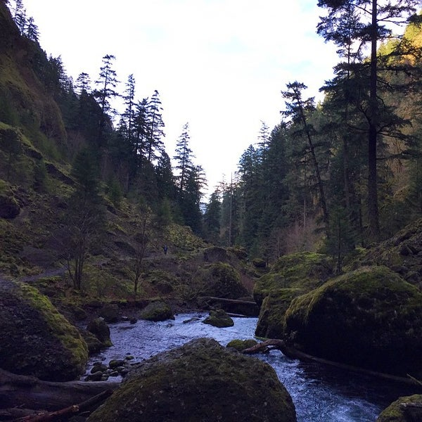 Photo taken at Wahclella Falls Trail by guy o. on 2/14/2015