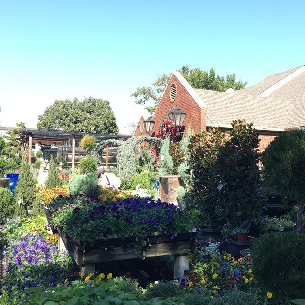 Photos at jackson 39 s home garden 7 tips for Jacksons home and garden dallas