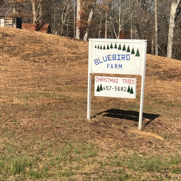 photo taken at bluebird christmas tree farm by nic b on 122 - Bluebird Christmas Tree Farm
