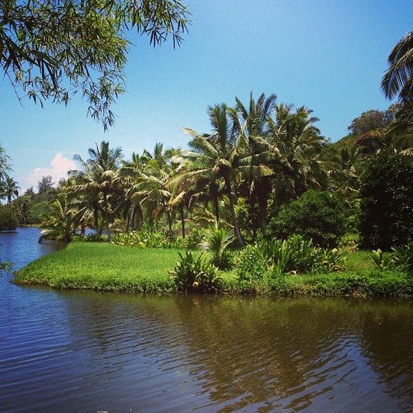 National tropical botanical garden 10 tips - National tropical botanical garden ...