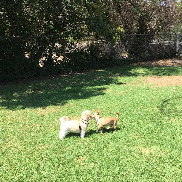 Photo taken at Laguna Canyon Dog Park by Stephanie Kaye R. on 9/4/2016