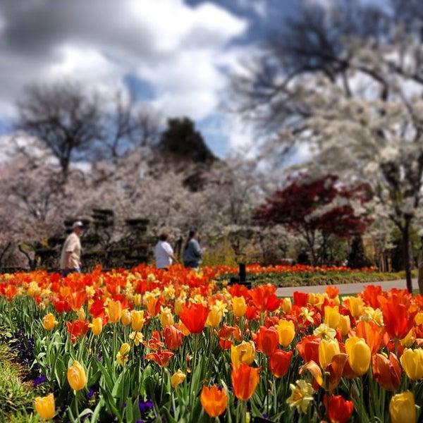 Foto tirada no(a) Dallas Arboretum and Botanical Garden por Matt H. em 3/29/2013