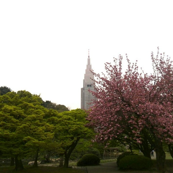 Photo taken at Shinjuku Gyoen by ( ´θ`)ノt on 4/16/2015