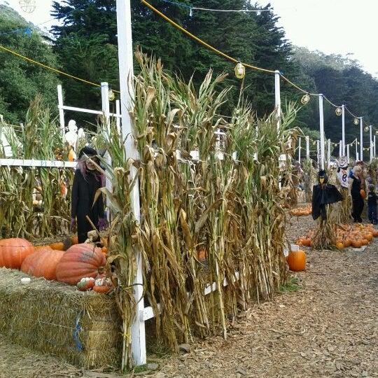 Photo taken at Clancy's Pumpkin Patch by Adam J. on 10/16/2011