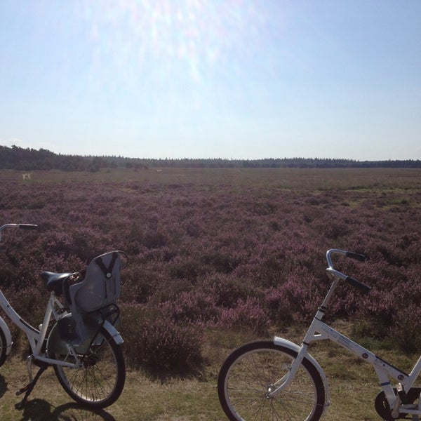 Photo taken at Nationaal Park De Hoge Veluwe by Vera on 8/27/2013