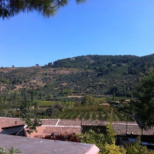 10/13/2012 tarihinde Bulent D.ziyaretçi tarafından Şirince Artemis Şarap ve Yöresel Tadlar Evi'de çekilen fotoğraf