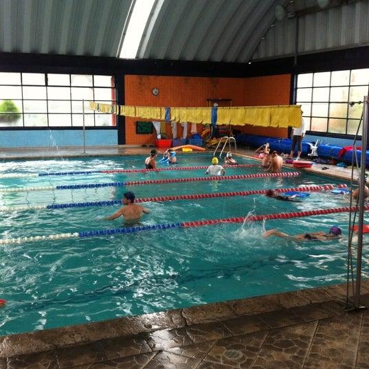 Alberca colegio am rica piscina en puebla for Alberca las americas