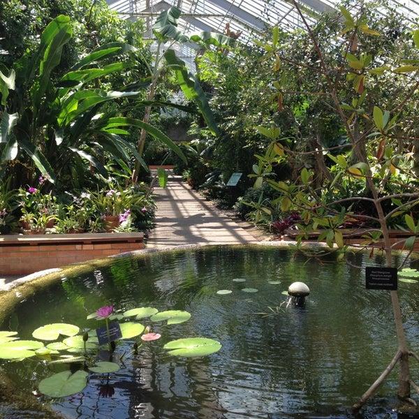 Matthaei Botanical Gardens 1800 N Dixboro Rd