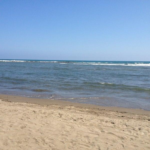 1/27/2013에 Lilly C.님이 Playa Chachalacas에서 찍은 사진