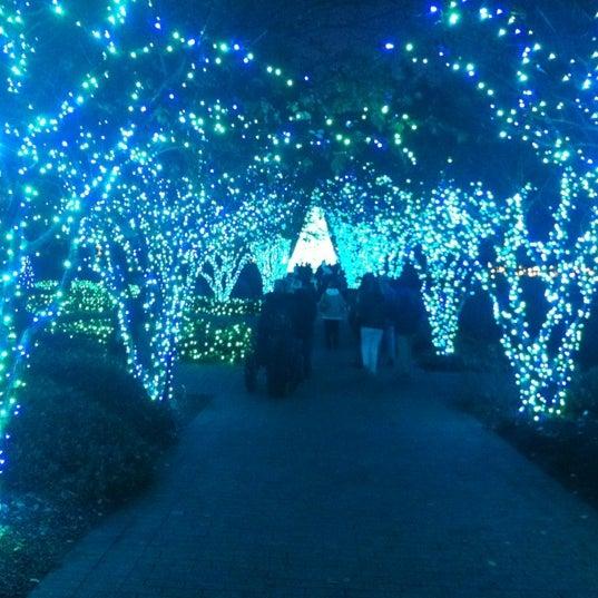 Photo taken at Atlanta Botanical Garden by Wendy G. on 11/28/2012