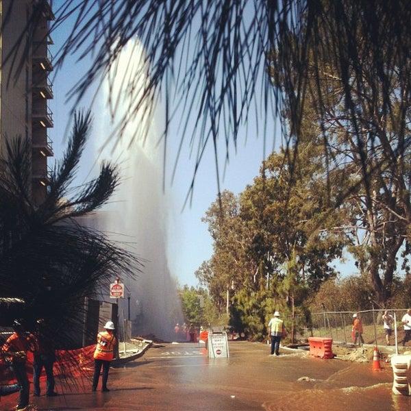 Winter Break Stay-Through - UCLA Residential Life