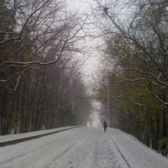 Foto diambil di İstanbul Teknik Üniversitesi oleh Berra G. pada 12/20/2012