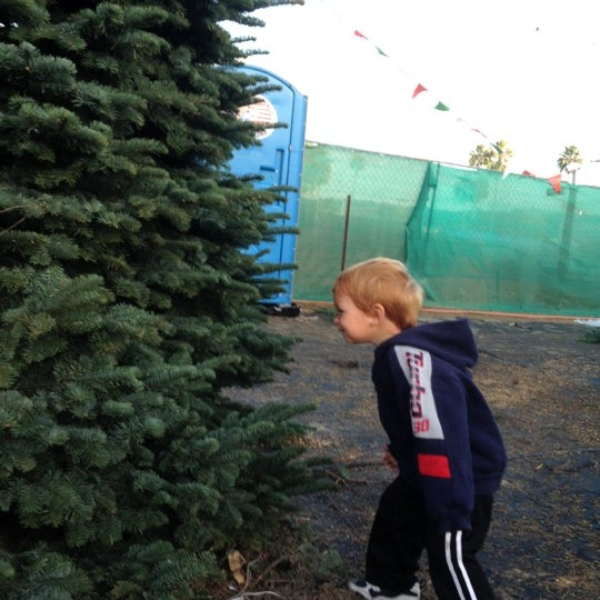 photo taken at pinery christmas trees del mar by sondra d on 12 - Pinery Christmas Trees