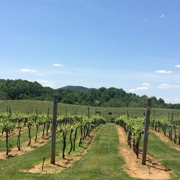 Photo taken at Three Fox Vineyards by Sarah K. on 5/31/2014