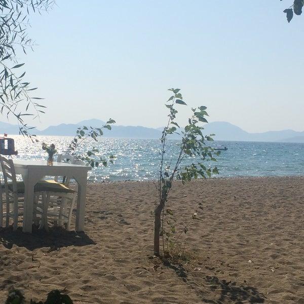 Sakin ve doğal tatilin adresi, misafirperverliği son derece harika olan, tatile çıkacağımda hiç düşünmeden gelebileceğim bir yer ☺️