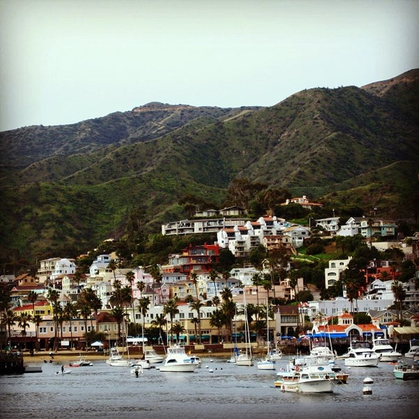 Photo taken at Santa Catalina Island by Neil A. on 2/9/2013