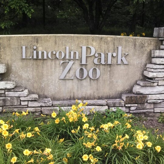 Photo taken at Lincoln Park Zoo by Chris L. on 6/29/2013
