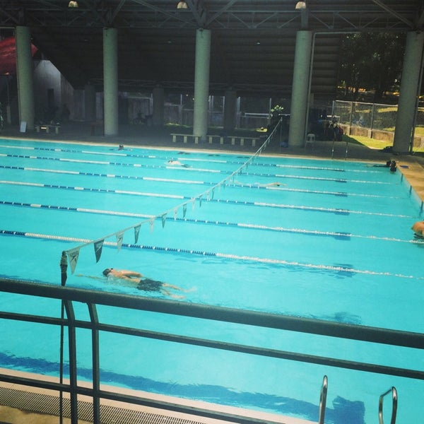 Loyola Schools Swimming Pool Pool In Quezon City
