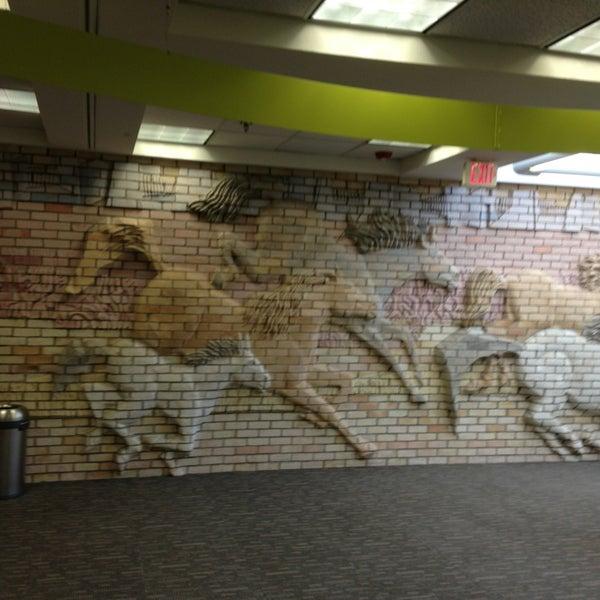 Scottsdale Public Library Mustang Biblioteca En Via