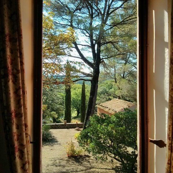 Photo prise au Domaine Saint-Antonin par Mathieu C. le8/3/2014