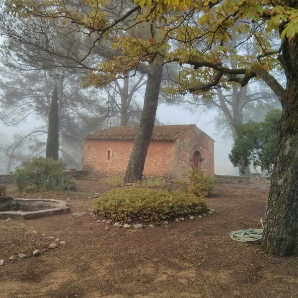 Photo prise au Domaine Saint-Antonin par Mathieu C. le7/26/2014