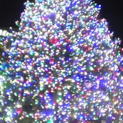 Photo taken at Campus Martius by Dan on 11/27/2012