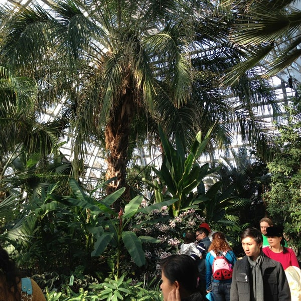 Photo taken at Garfield Park Conservatory by Tom B. on 2/9/2013