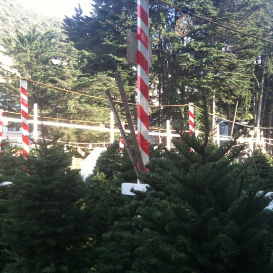 Photo taken at Clancy's Christmas Trees by Christine S. on 12/8/2012
