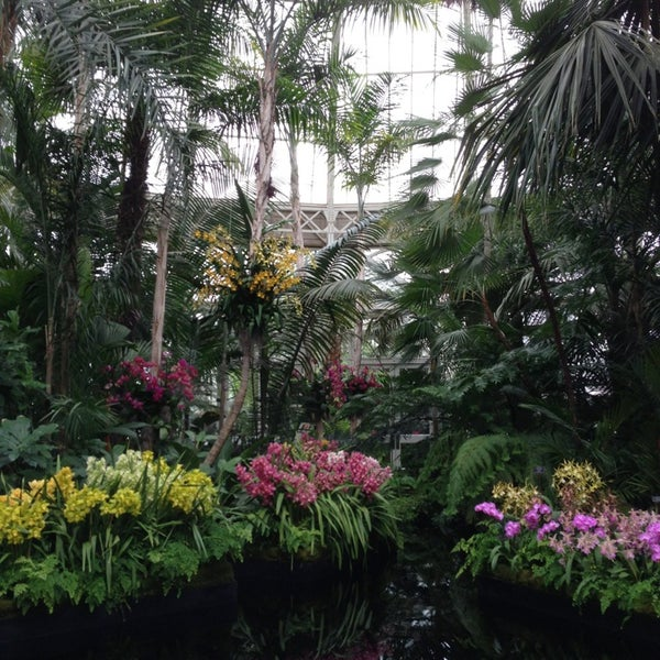 Photo taken at Enid A. Haupt Conservatory by Christopher C. on 3/16/2013