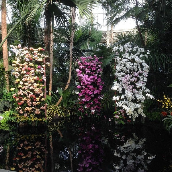 Photo taken at Enid A. Haupt Conservatory by Christopher C. on 3/15/2014