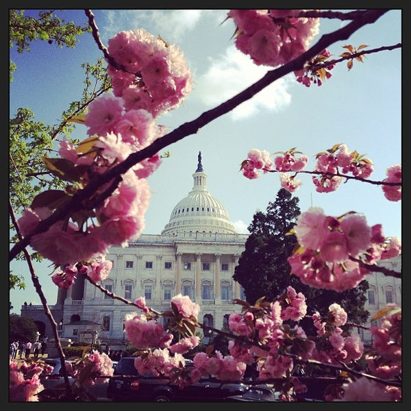 Photo taken at United States Capitol by John K. on 4/16/2013