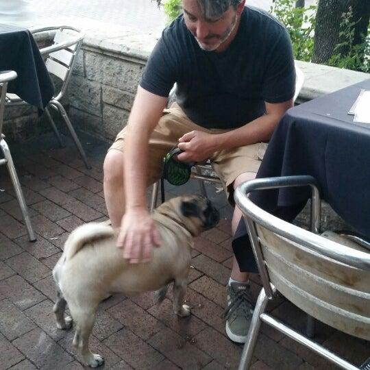 Pleasant patio. Clyde (dog) friendly.