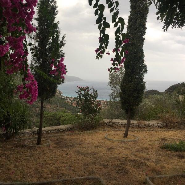 9/20/2016 tarihinde gulcin h.ziyaretçi tarafından Paradise Garden Butik Hotel'de çekilen fotoğraf