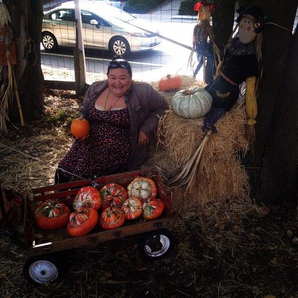 Photo taken at Clancy's Pumpkin Patch by Jasmine P. on 10/24/2014